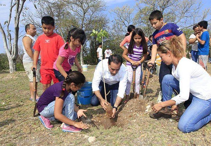 El presidente municipal convivió con niños y junto con ellos plantó arboles de maculís en el parque Bepensa, en la avenida Mérida 2000. (Milenio Novedades)