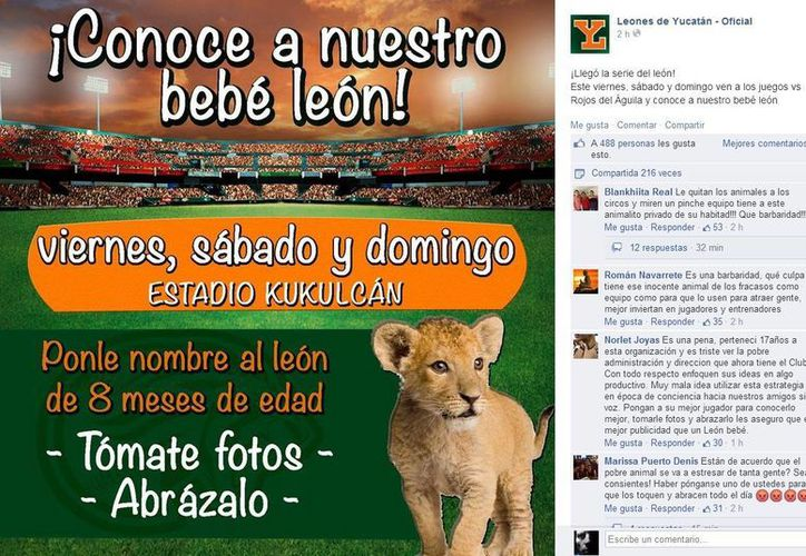 Estas son algunas de las reacciones en contra de la publicidad de Leones con un cachorro. (Facebook/Página oficial de Leones de Yucatán)