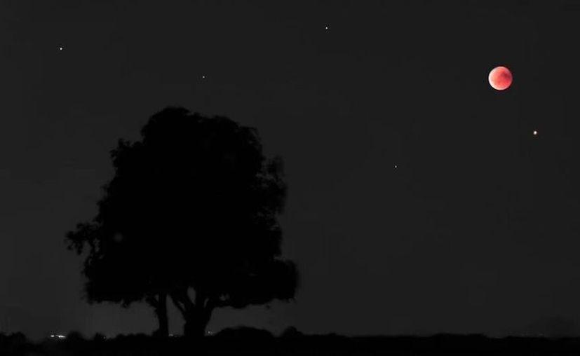 Esta noche el satélite natural de la Tierra continuará en fase menguante, y se verá cerca del llamado planeta rojo. (Novedades Yucatán)
