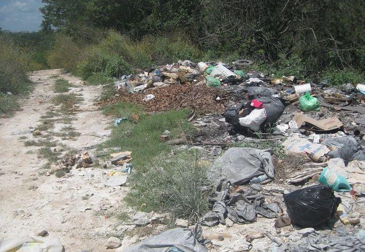 Pobladores del municipio se quejan de que la basura causa afectaciones de salud en las familias. (Javier Ortiz/SIPSE)