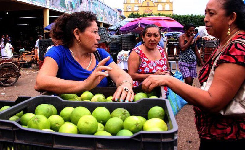Yucatán es una de los principales productores de cítricos del país. A pesar de ello, el precio del limón ha registrado un aumento considerable. (Milenio Novedades)