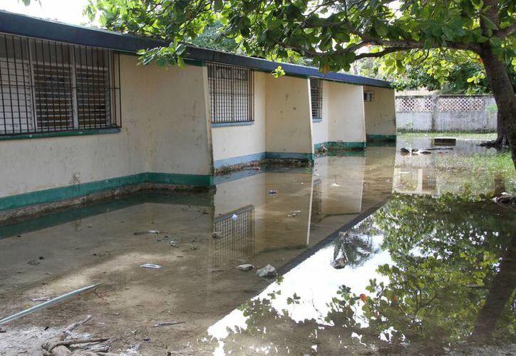 Algunas escuelas continúas con áreas inundadas. (Tomás Álvarez/SIPSE)