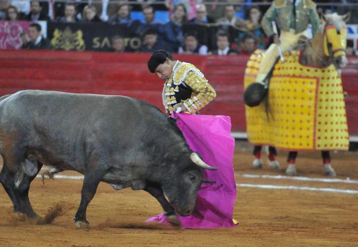 Las corridas de toros quedaron fuera de la regulación aprobada en el Senado y que pasará a manos de la Cámara de Diputados para su análisis. (Archivo/Notimex)