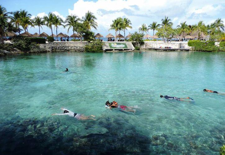 La finalidad de este programa es determinar el estado de salud que tienen los corales. (Irving Canul/SIPSE)