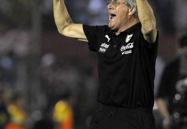 Tabárez dijo que habrá que individualizar los entrenamientos de algunos de sus jugadores, como Luis Suárez y Diego Godín. (AP)