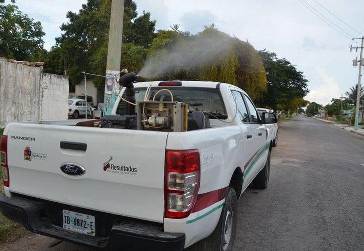 Las fumigaciones se realizarán hasta el 4 de noviembre en la zona sur de Quintana Roo. (Redacción/SIPSE)