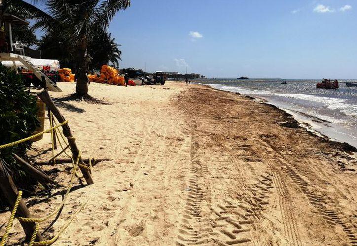 La playa permanece con poco sargazo en comparación con la semana pasada. (Octavio Martínez/SIPSE)