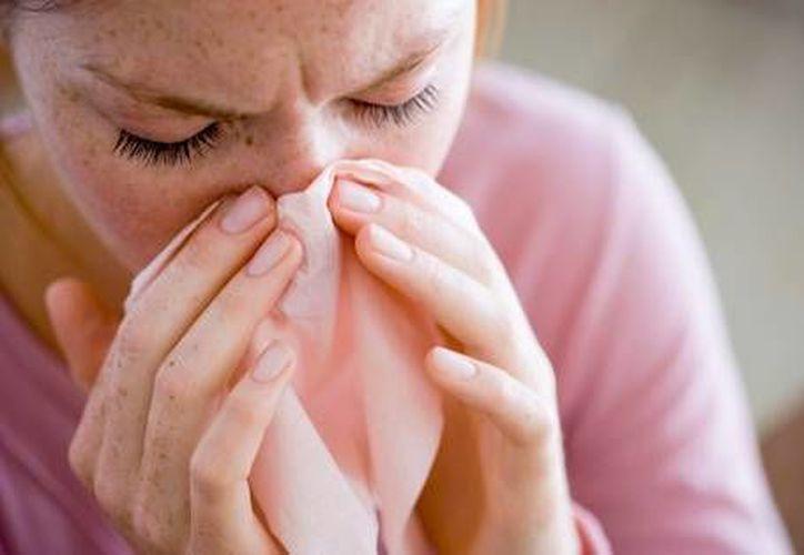 Algunos síntomas son: congestión nasal, estornudos frecuentes y prolongados, entre otros. (Foto de Contexto/Internet)
