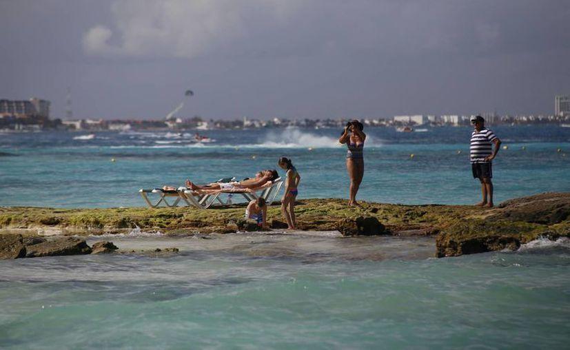 Pretenten buscar alternativas para ayudar a hacer un frente al cambio climático. (Israel Leal/SIPSE)