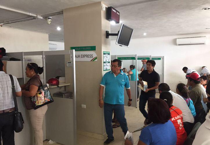 La Sefiplan podría extender la aplicación del subsidio al costo de las placas en Quintana Roo. (David De La Fuente/SIPSE)