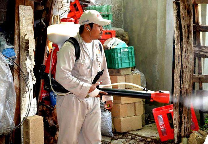 Segundo lugar ocupa Quintana Roo en paludismo, de acuerdo con estadísticas de Salud. (Foto: Javier Ortiz / SIPSE)