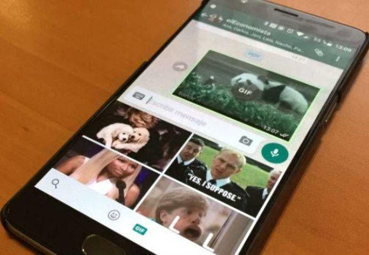 WhatsApp incorpora la búsqueda de gifs en sus chats y  deja mandar hasta 30 fotos a la vez. (El Economista)