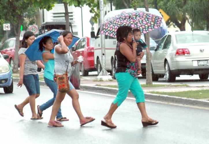 Para este domingo se espera que siga lloviendo en el estado. (Milenio Novedades)