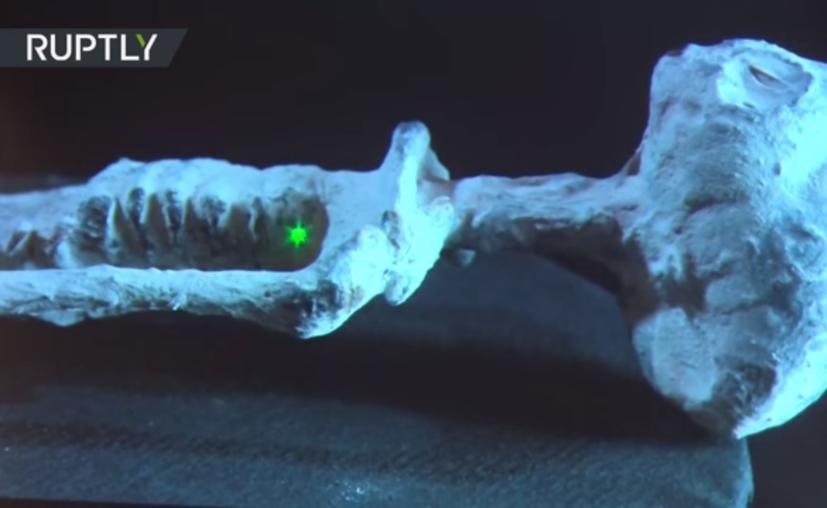 Maussan presentó imágenes de rayos X que retratan uno de los objetos momificados. (Foto: Captura del video)