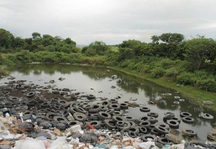 El secretario de Desarrollo Urbano y Vivienda consideró urgente revertir la contaminación de los acuíferos. (Archivo/SIPSE)