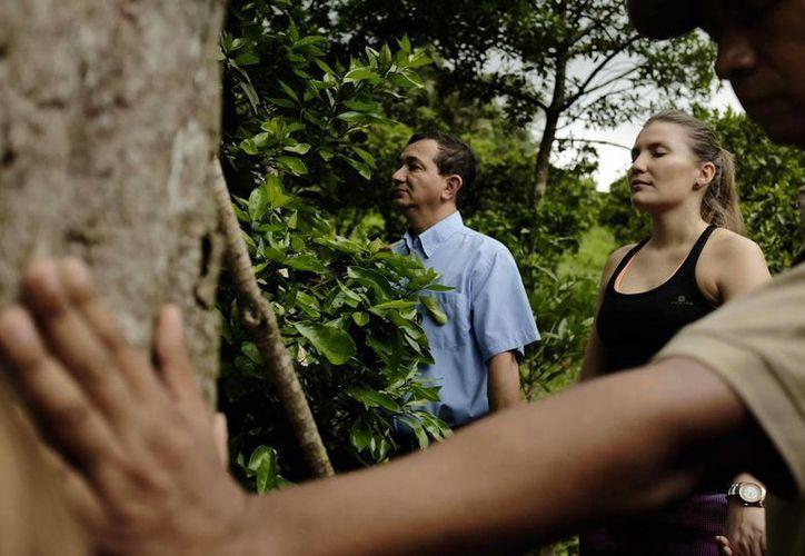 """En la imagen, varias personas realizan una meditación """"conectados con la naturaleza"""" en las inmediaciones de las """"ruinas de Ujarras"""" en la provincia de Cártago, en Costa Rica. (EFE)"""