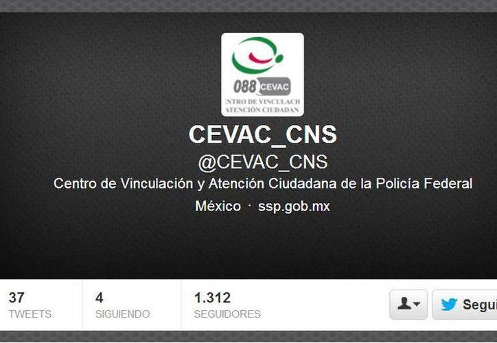 La cuenta ya tiene más de mil followers. (Captura de pantalla)