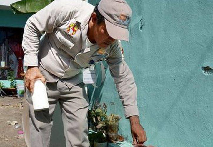 La jornada nacional contra el dengue y el chikungunya se realiza del 31 de agosto al 4 de septiembre.