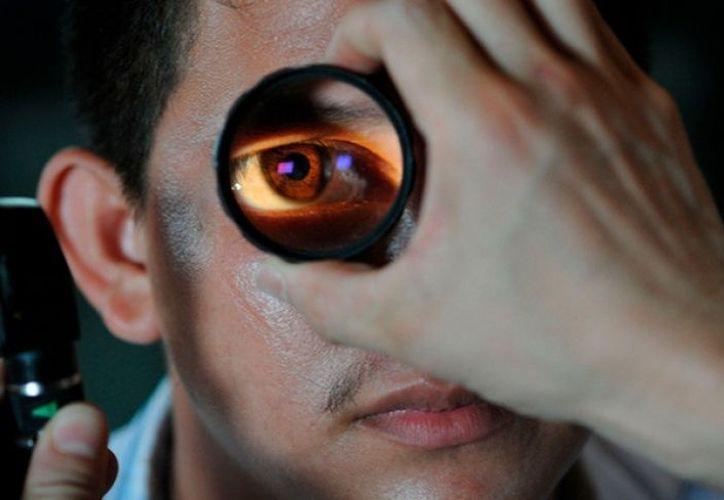 Su presencia no había causado ninguna infección en el ojo del paciente. (Contexto)