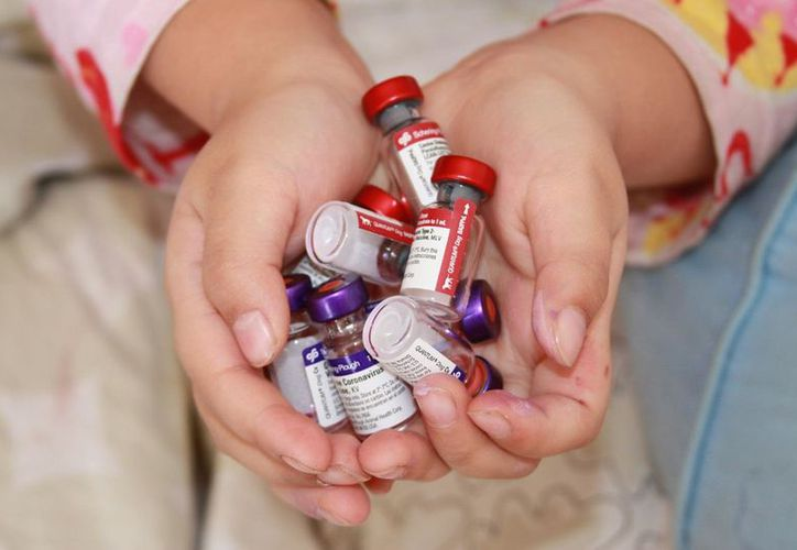 El medicamento bloquea los síntomas si se aplica en la piel en un plazo de 15 minutos después de la picadura. (Flickr/ Imagen ilustrativa)