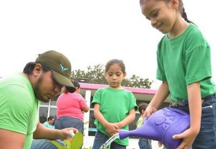 El preescolar Mágico Bacalar ubicado en la cabecera municipal, recibió recursos del programa Eco School.