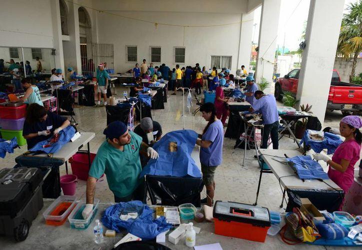 Veterinarios de diversas partes del país y el mundo participaron. (Luis Pérez/SIPSE)