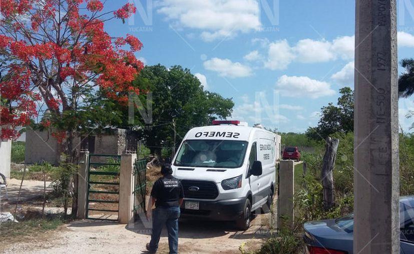 Un hombre de 70 años se ahorcó en un rancho en Conkal. (Novedades Yucatán)