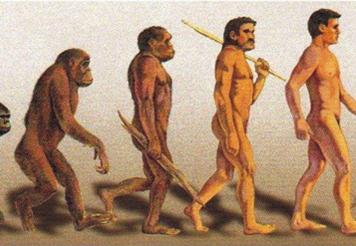 La evolución del hombre a lo largo de la historia esta relacionada con la alimentación y los cambios que han habido en ella. (Redacción/SIPSE)