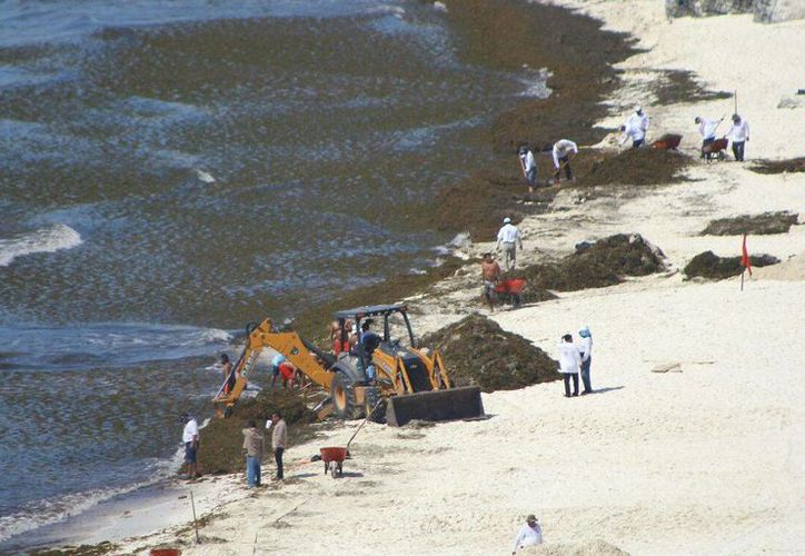 En el arenal trabajan 25 empleados de Servicios Públicos. (Licety Díaz/SIPSE)