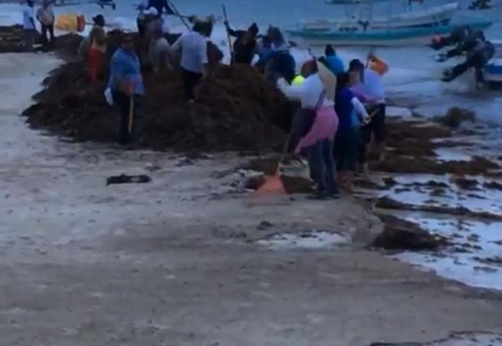 Personas que limpiaban el sargazo a orilla de la playa fue arrojado al mar. (Foto: Captura de video)