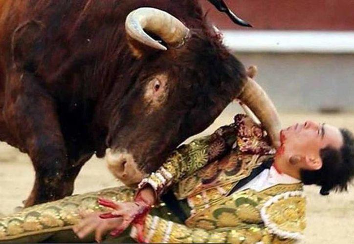 Imagen de archivo de la cornada que el torero Saúl Jiménez Fortes sufrió el pasado mes de mayo en Salamanca. El torero sigue hospitalizado. (lacronicadesalamanca.com)