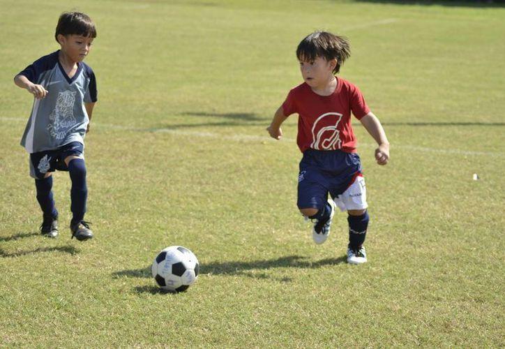 La primera categoría infantil marcha a la perfección. (Redacción/SIPSE)