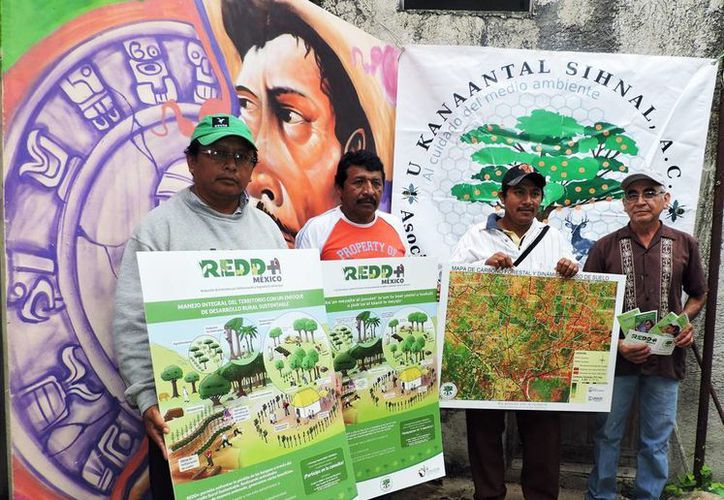 El personal técnico de la Asociación Regional de Silvicultores U Kanaantaal Sihnal, informó a la comunidad maya de los efectos sobre el fenómeno climático. (Milenio Novedades)