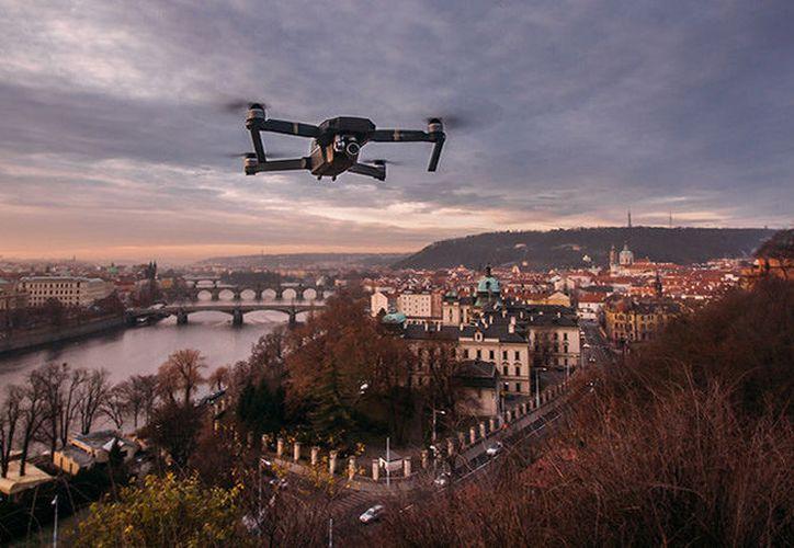 Tras lograr aterrizar el drone y revisar en su casa la grabación, Thomas Arnold, dueño del aparato, quedó 'sumamente' impresionado. (RT)