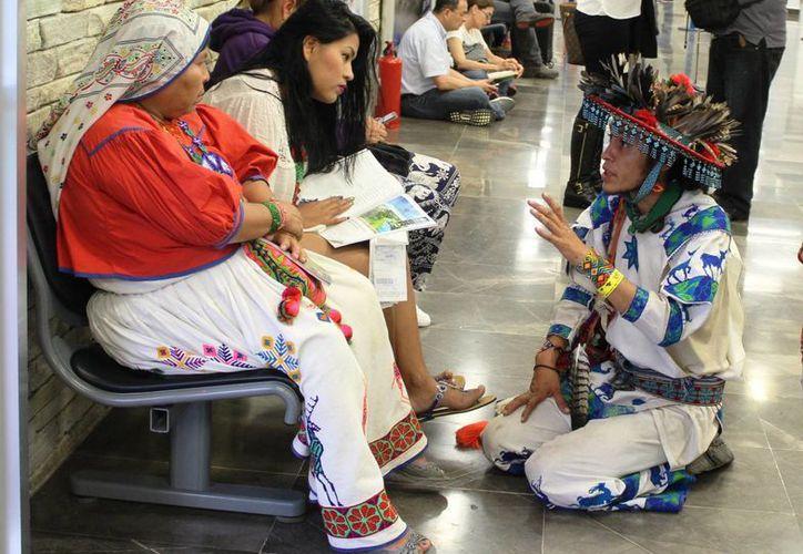 Siete de cada 10 ciudadanos percibe discriminación en Quintana Roo. (Eddy Bonilla/SIPSE)