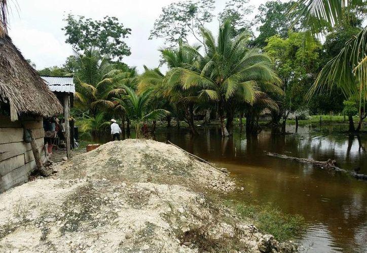 Mantendrán la vigilancia en la zona ante un probable aumento en los niveles de agua. (Edgardo Rodríguez/SIPSE)