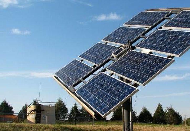 Las celdas atrapan energía solar que luego es distribuida a los negocios o casas. (ecologiaverde.com)
