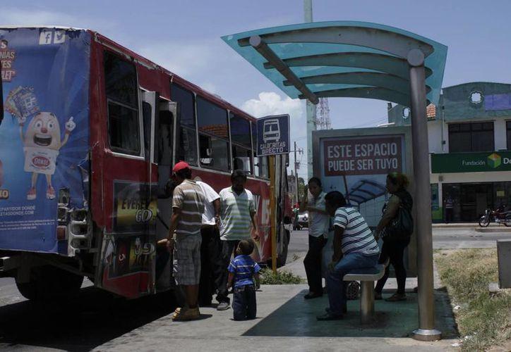 Los camiones que dan el servicio actualmente no deben ver como una competencia a los que llegan, sino como un servicio complementario. (Harold Alcocer/SIPSE)