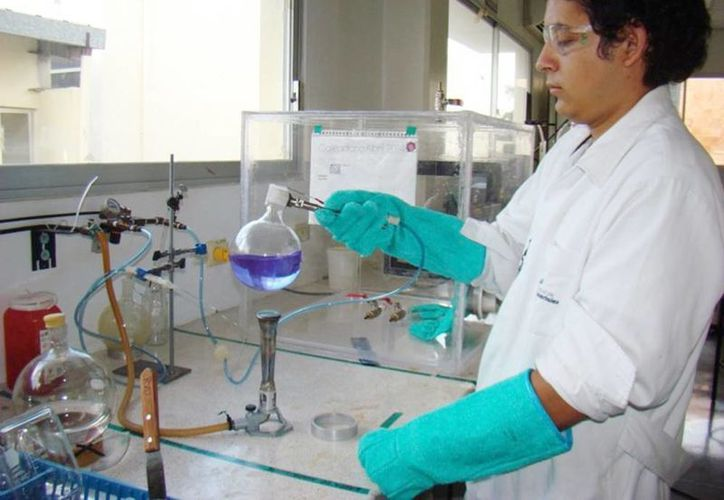 Analiza el CICY residuos organicos que se acumulan en el litoral de Yucatpan. Imagen de contexto de uno de los investigadores. (Milenio Novedades)
