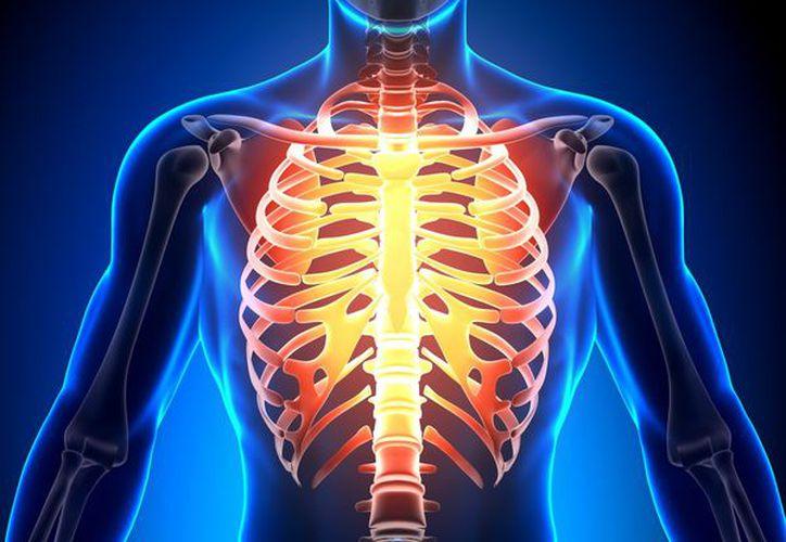 Esta especialidad atiende padecimientos en pulmones, costillas, esternón, grandes vasos, tráquea, esófago y corazón. (Redacción/SIPSE)