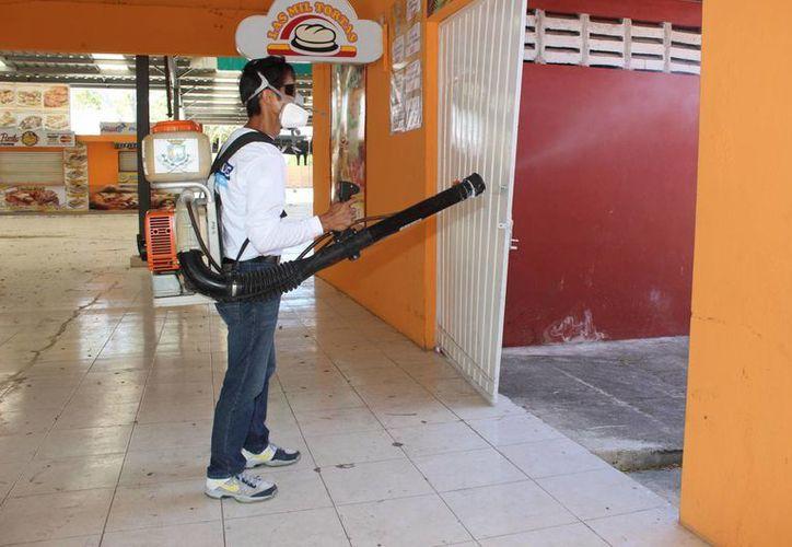 De acuerdo al coordinador general de Política Comunitaria del Ayuntamiento de Mérida, Víctor Hugo Lozano Poveda, las acciones de fumigación y abatización en Plaza Carnaval permitirán que no haya moscos durante los festejos. (SIPSE)
