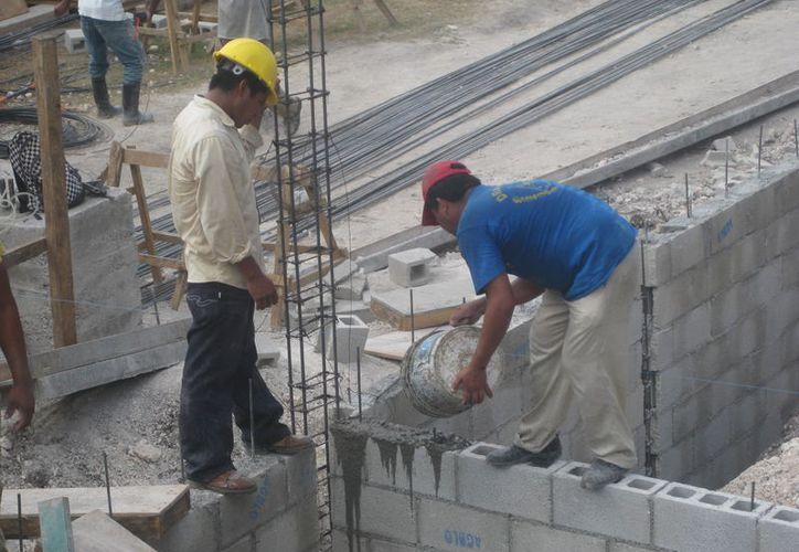 Durante todo el año presentaron baja actividad, pero desde noviembre aumentaron los trabajos. (Javier Ortiz/SIPSE)