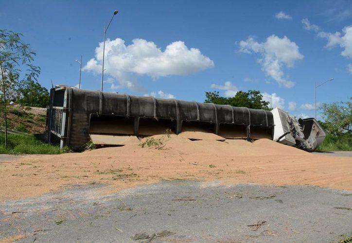 Un trailer perdió sus 30 toneladas de trigo en el Anillo Periférico de Mérida este miércoles. (SIPSE)