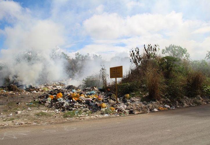 El basusero del ejido de Sac-Xan no recibe saneamiento de las autoridades municipales y los residuos están fuera de control. (Carlos Castillo/SIPSE)