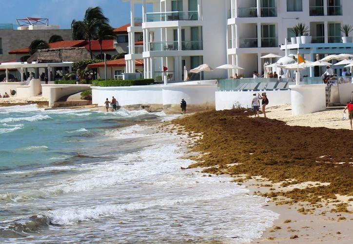 La autorización del plan de recuperación de playas fue para Cancún, Playa del Carmen y Cozumel. (Redacción/SIPSE)