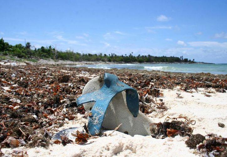 Este sábado 20 de septiembre se realizará la limpieza internacional de playas en las costas de Cozumel.  (Gustavo Villegas/SIPSE)