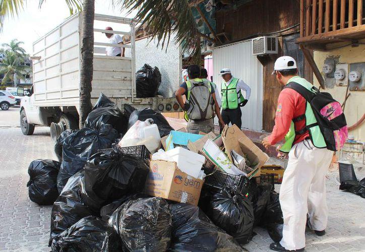La Zofemat cuenta con dos brigadas para levantar la basura. (Ivette Ycos/SIPSE)
