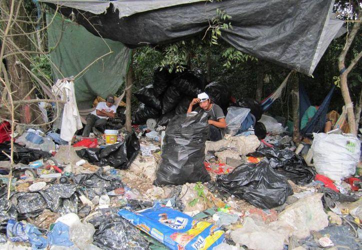 Familias enteras se dedican a buscar entre los desperdicios, plástico, cartón y aluminio para vender. (Rossy López/SIPSE)