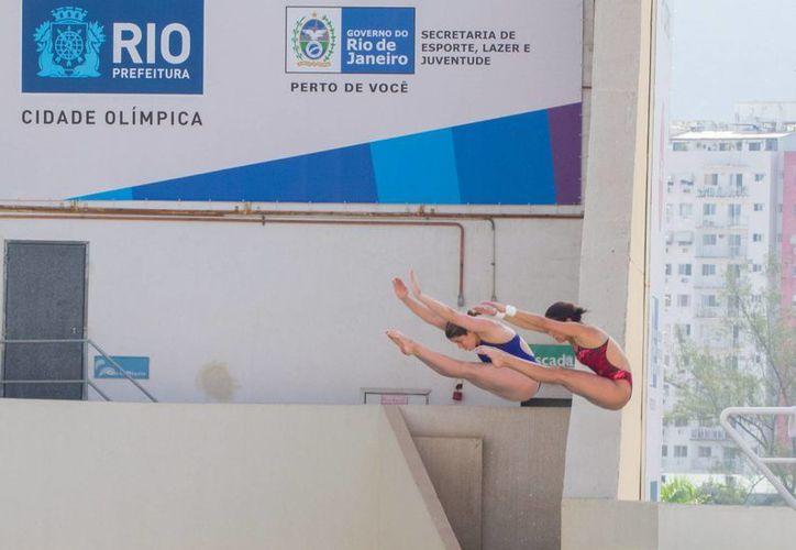 Tras calificar este viernes a Juegos Olímpicos, las clavadistas mexicanas Paola Espinosa y Alejandra Orozco dijeron que ahora tratarán de mejorar lo logrado en Londres 2012, cuando obtuvieron la medalla de plata. (Notimex)