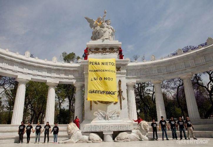 Greenpeace lleva años en campaña contra los cultivos transgénicos (modificados genéticamente) en todo el mundo. La imagen corresponde a una manifestación contra estos cultivos en el centro de la capital mexicana. (greenpeace.org)